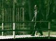 Bela Lugosi video Desde el puente - Nota 2010