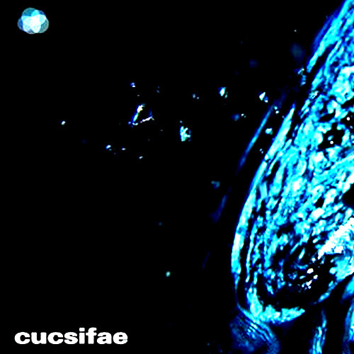 Cucsifae - TAKE YOUR HIGHER