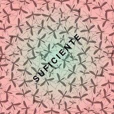 Babasónicos - SUFICIENTE - SINGLE