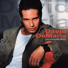 David DeMaría - DAVID DEMARIA