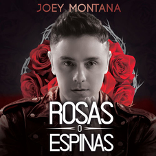 ROSAS O ESPINAS - SINGLE